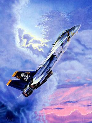 Le F-14 : un avion de légende Intro